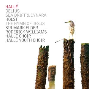 Delius Holst Halle